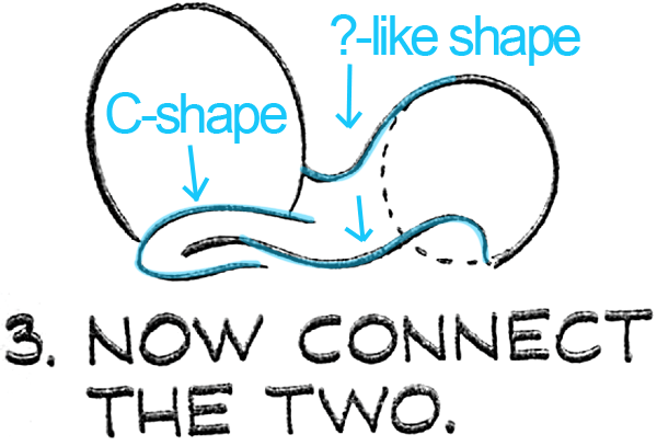 Now connect the 2 ovals as seen above.
