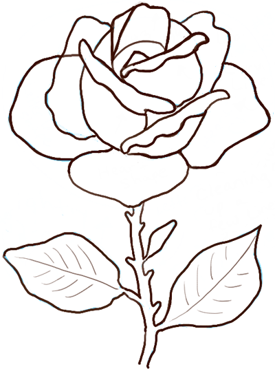 How to draw roses step by step tutorial