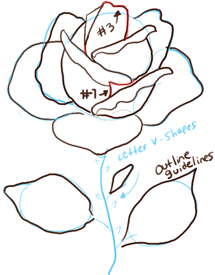 step07-drawing-of-a-rose