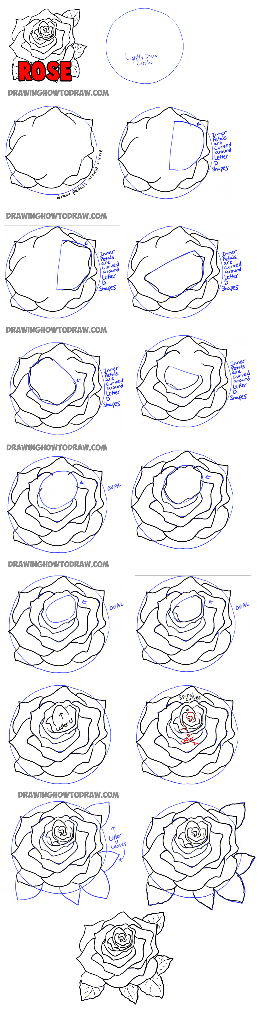How To Draw Roses Opening In Full Bloom Step By Step Drawing Tutorial How To Draw Step By Step Drawing Tutorials