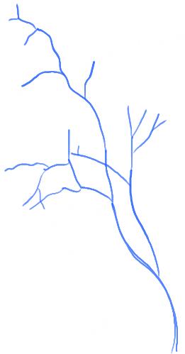 step04-how-to-draw-trees-oak-tree