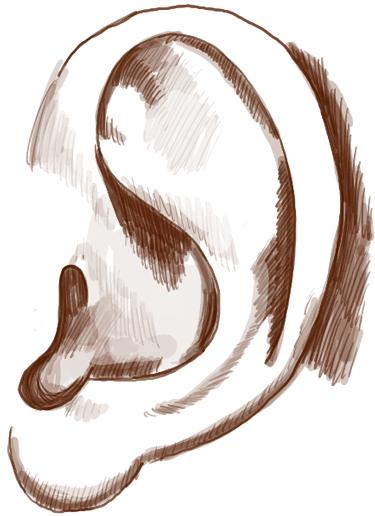 step05-ears