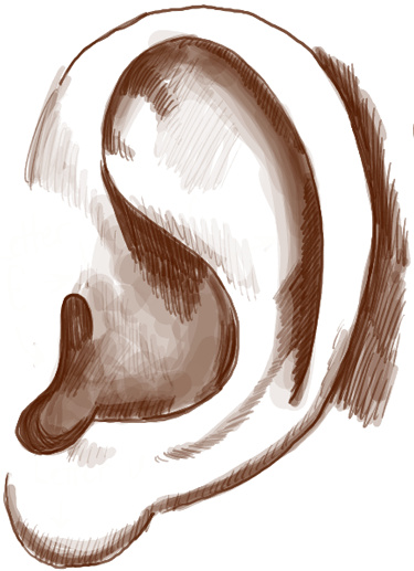 How To Draw Ears Side View With Easy Steps Lesson How To Draw Step