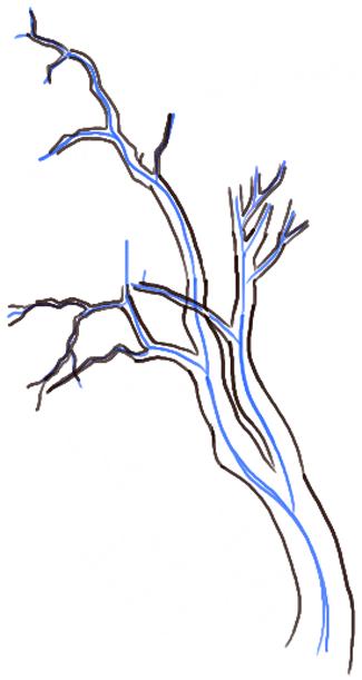 step06-how-to-draw-trees-oak-tree