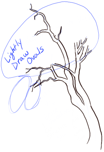 step08-how-to-draw-trees-oak-tree