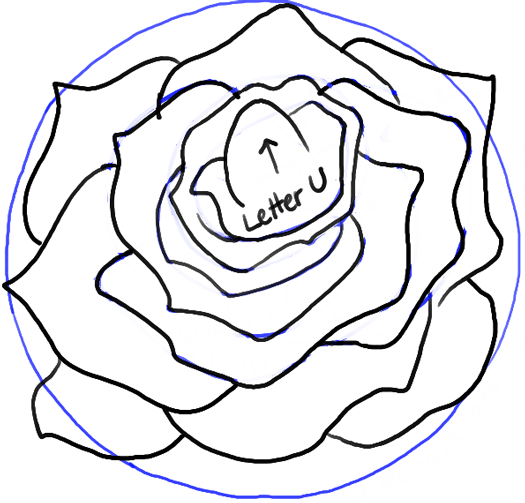 step12-rose-open-rose-blossoming