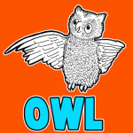 How to Draw Cartoon Owl with Easy Steps Tutorial