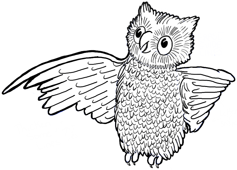How to draw cartoon owl with easy steps tutorial how to for Draw the owl