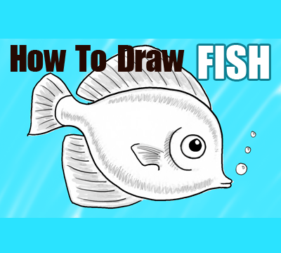 How To Draw A Cute Fish Cartoon With Simple Steps For Kids How To