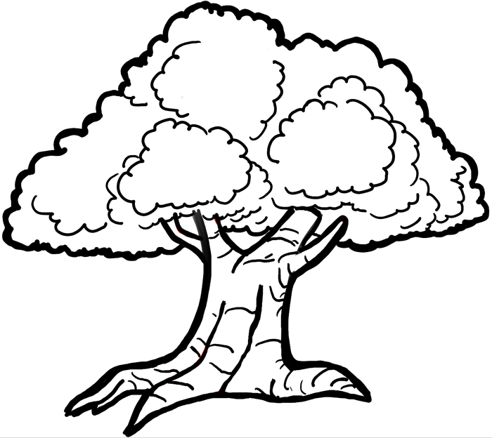 how to draw cartoon trees with easy step by step drawing