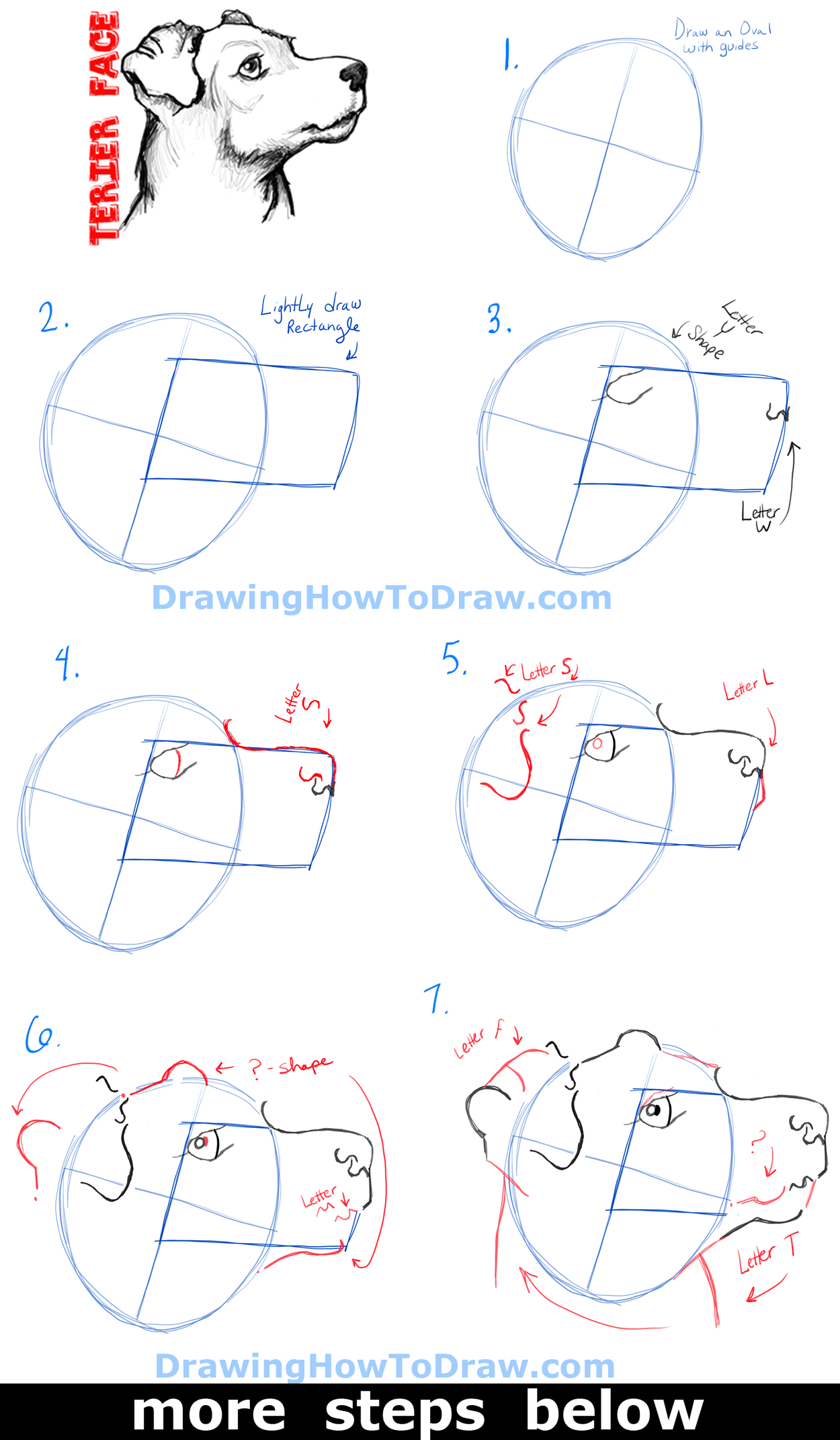 How to Draw a Terrier's Face / Dog's Face with Easy Steps