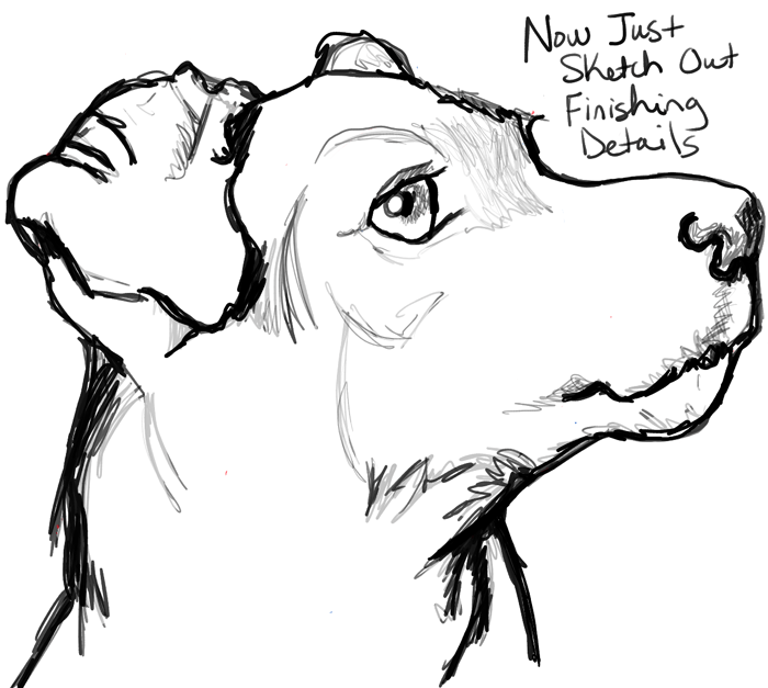 How To Draw A Terriers Face Dogs Face With Easy Steps