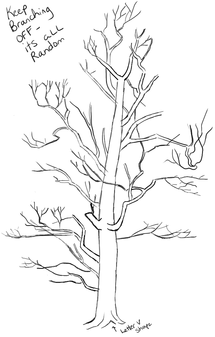 step06-learn-howtodraw-trees