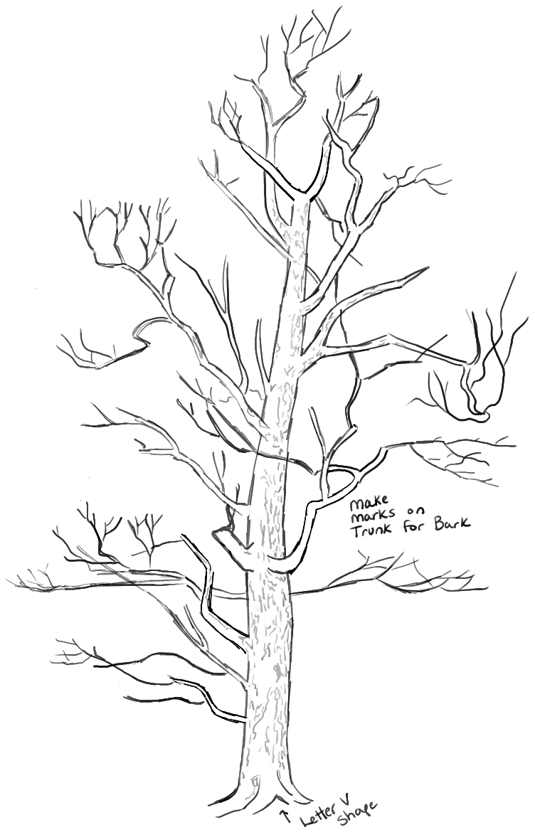 Step07learnhowtodrawtrees