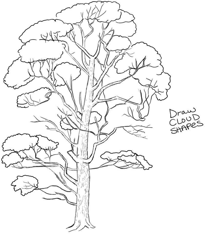 How to draw trees drawing realistic trees in simple for Learn drawing online step by step