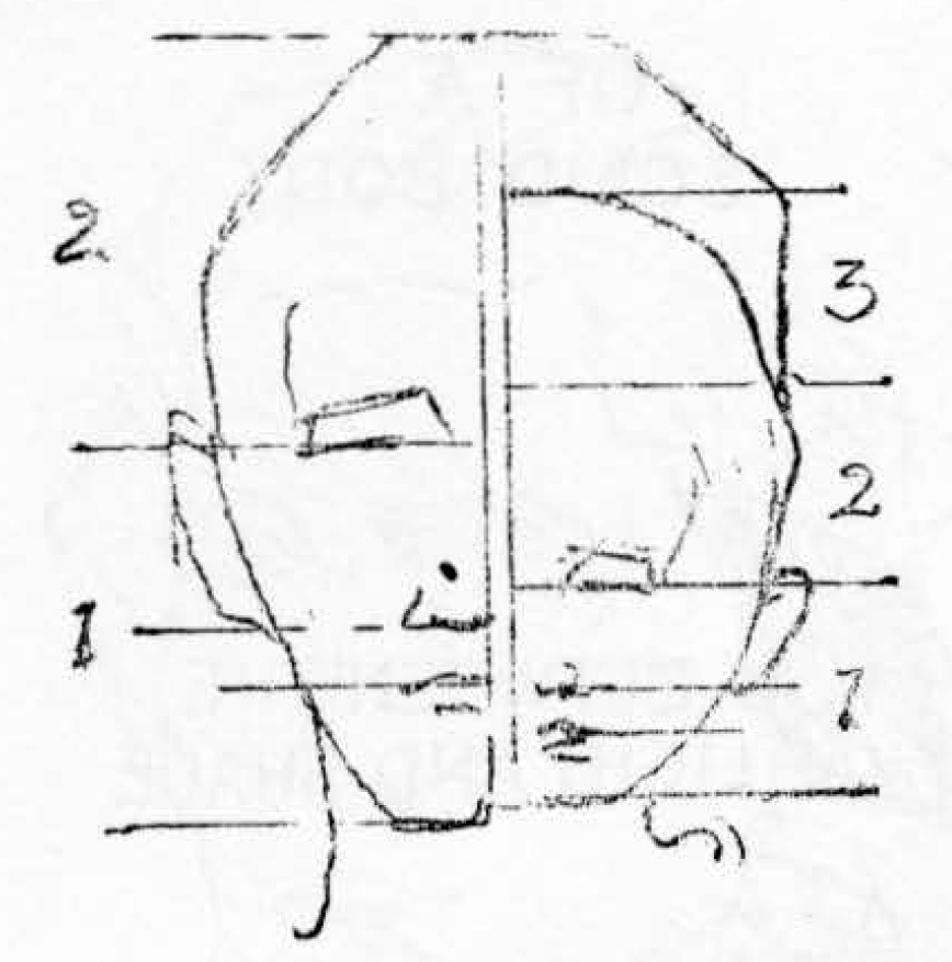 01-drawing-childs-head-proportions- The head and face of an infant may be divided in three parts, the eyes placed on the line marking the upper third, from the chin up.