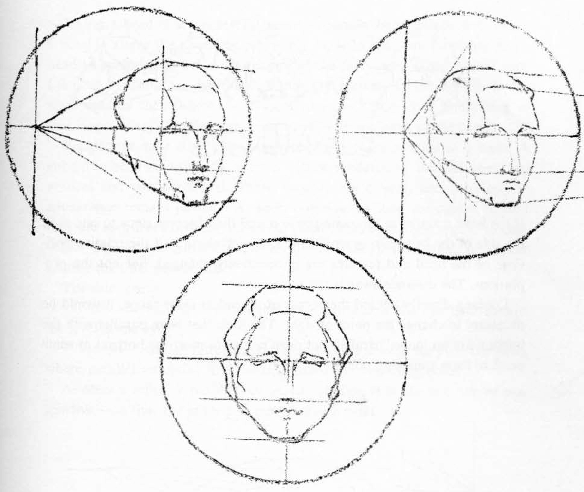 02-drawing-head-in-perspective-The features will parallel the horizontal line.