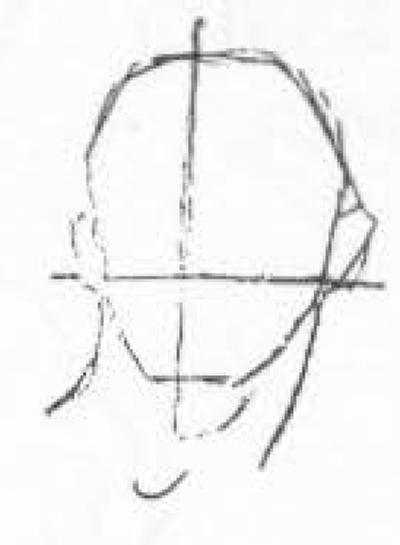 Line Drawing Ear : How to draw human head in the right measurements and