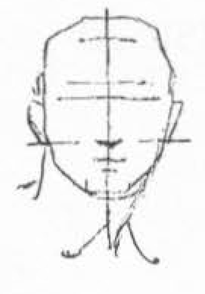 05-drawing-head-the line drawn through the vertical center of the face.