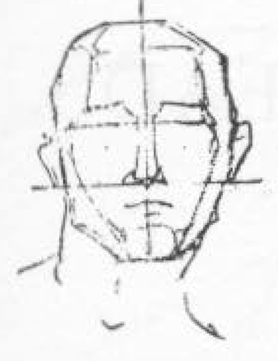 06-drawing-head-draw a line from each cheek bone at its widest part, to the chin, on the corresponding side, at its highest and widest part.
