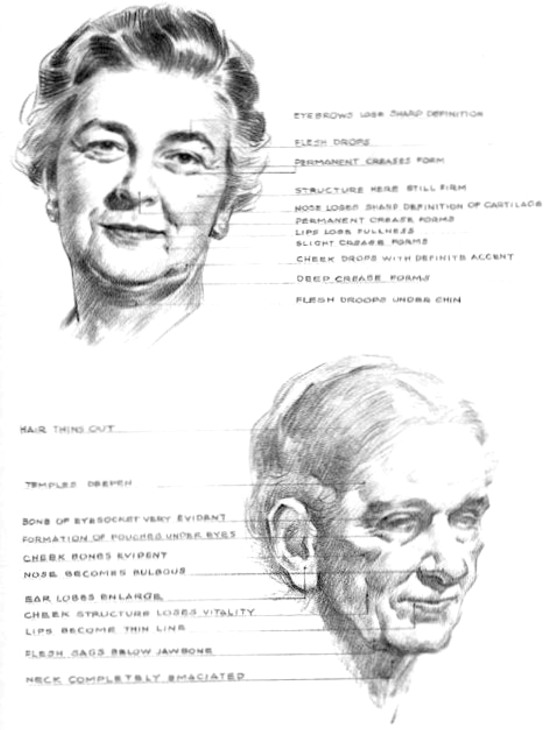 how to draw old elderly aging women's faces