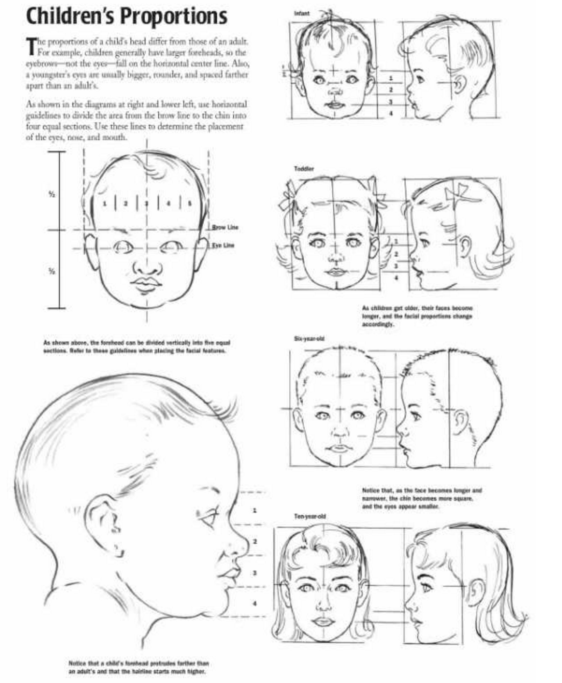 proportions of children infant and baby heads reference sheet - Children Drawing Sheets