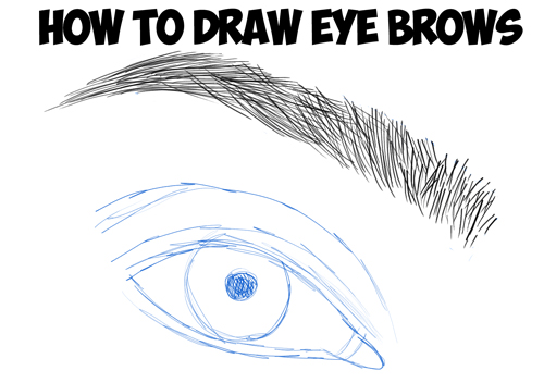 how to draw eye brows