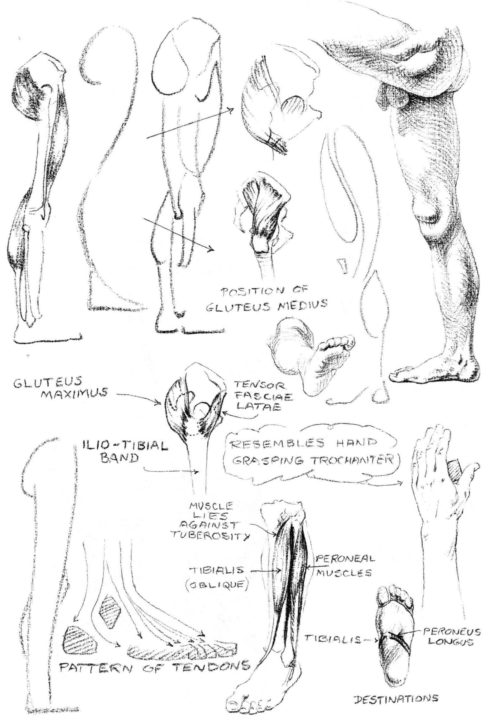 how to draw legs and feet
