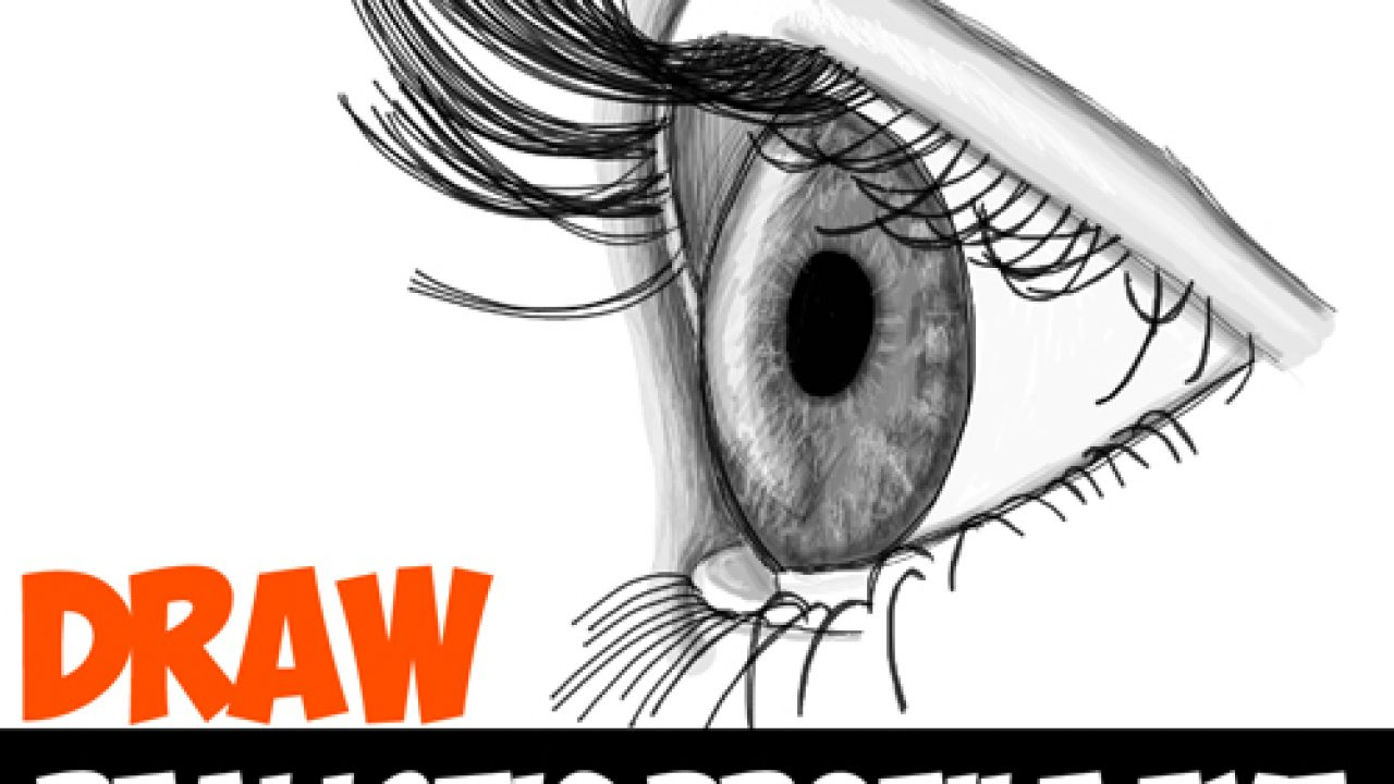 How To Draw Realistic Eyes From The Side Profile View Step