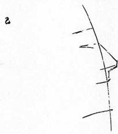 drawing-the-head-Now the eyebrow and the chin line. The mouth is one-third from nose to chin.