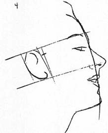 drawing-the-head-The distance from eyebrow to chin will give you back of ear, and it fits in an oblong box.
