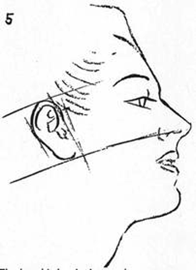 drawing-the-head-The head is beginning to shape up so now form up nose, mouth and chin, as well as ear.