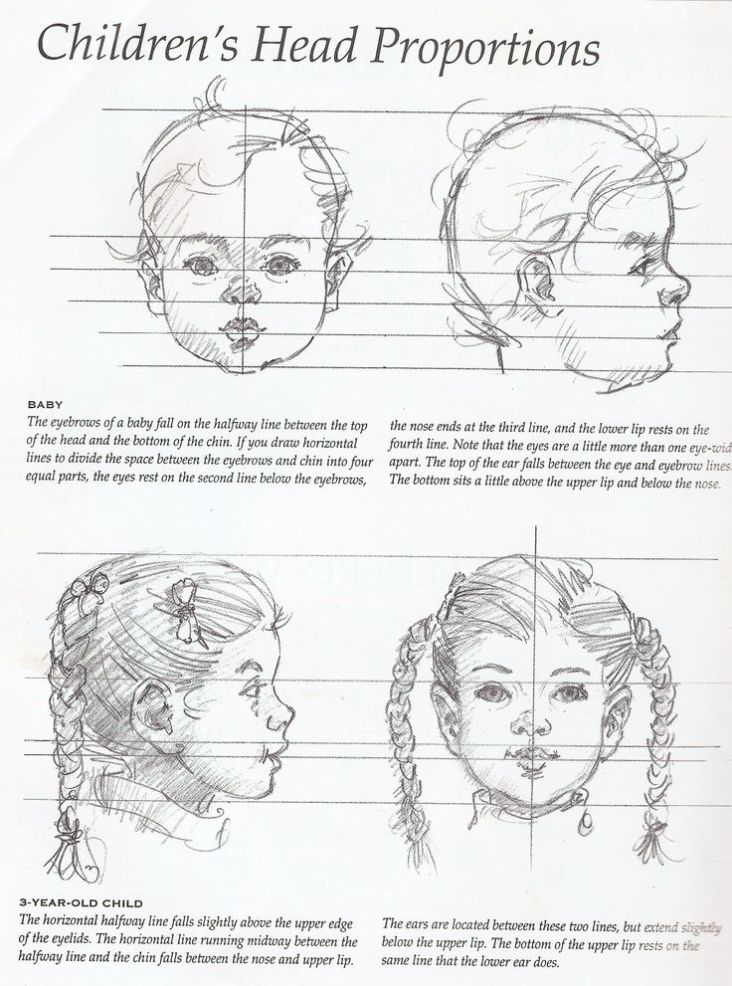 proportions of a childs head for drawing