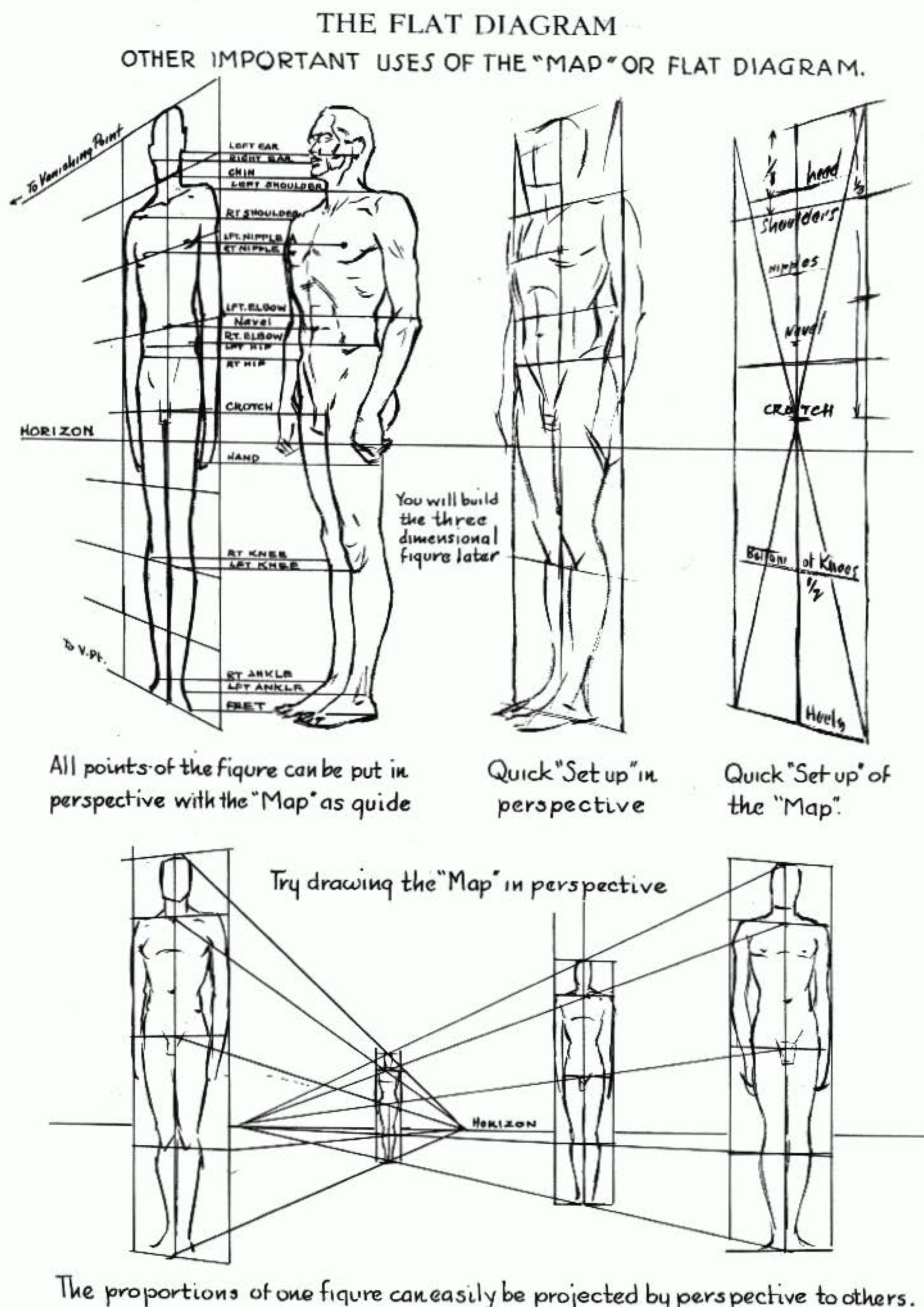 flat-diagram2-human-body-perspective-drawing