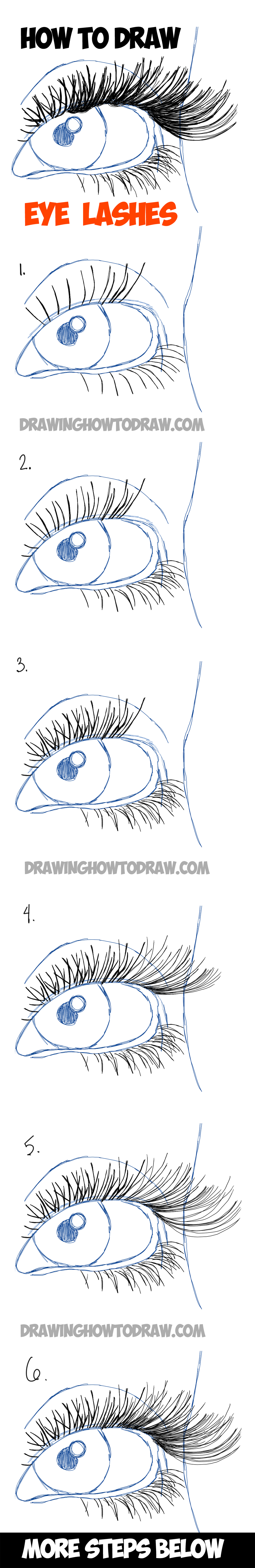 Learn How To Draw Eye Lashes With Step By Step Illustrated Tutorial How To  Draw Eye