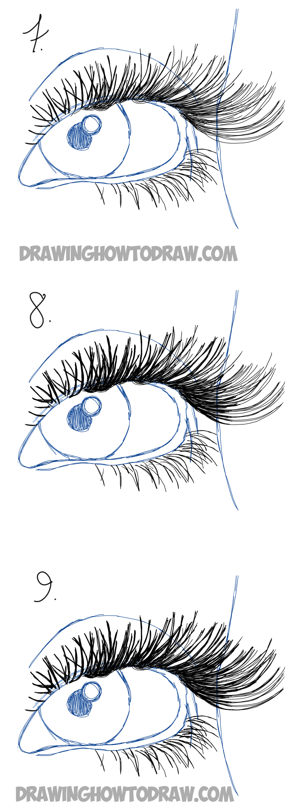 Drawing Eye Lashes Easy Steps Lesson