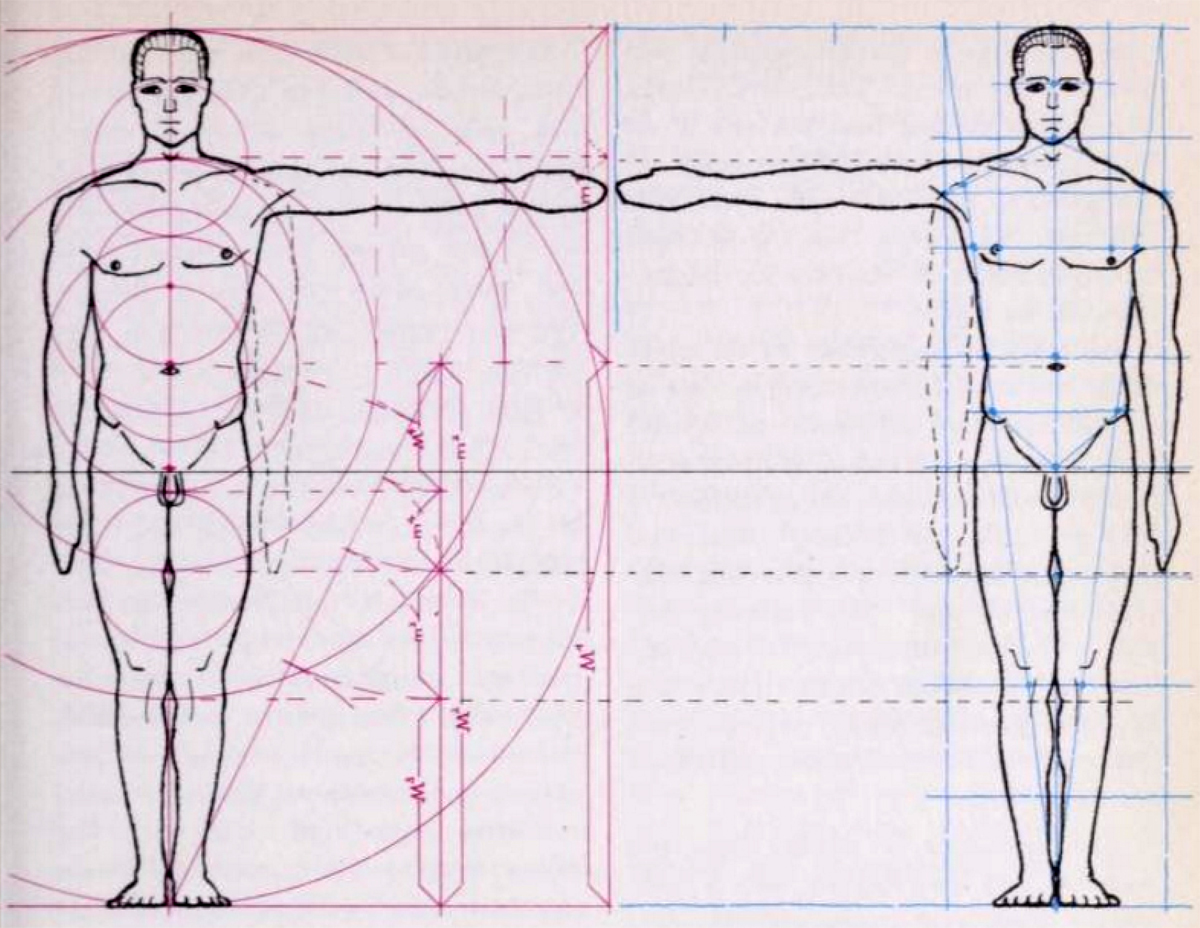 Here is a blurb from an old book that sheds light on how artists use to figure out the correct measurements and proportions of the human body.