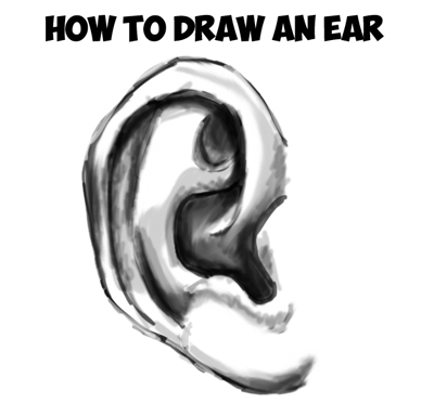 how to draw ears step by step drawing tutorial