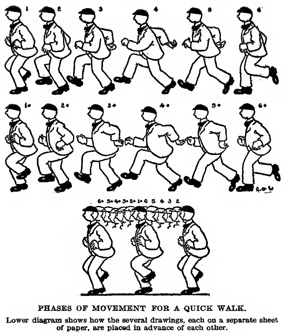 how to draw a quick walk - phases of movement