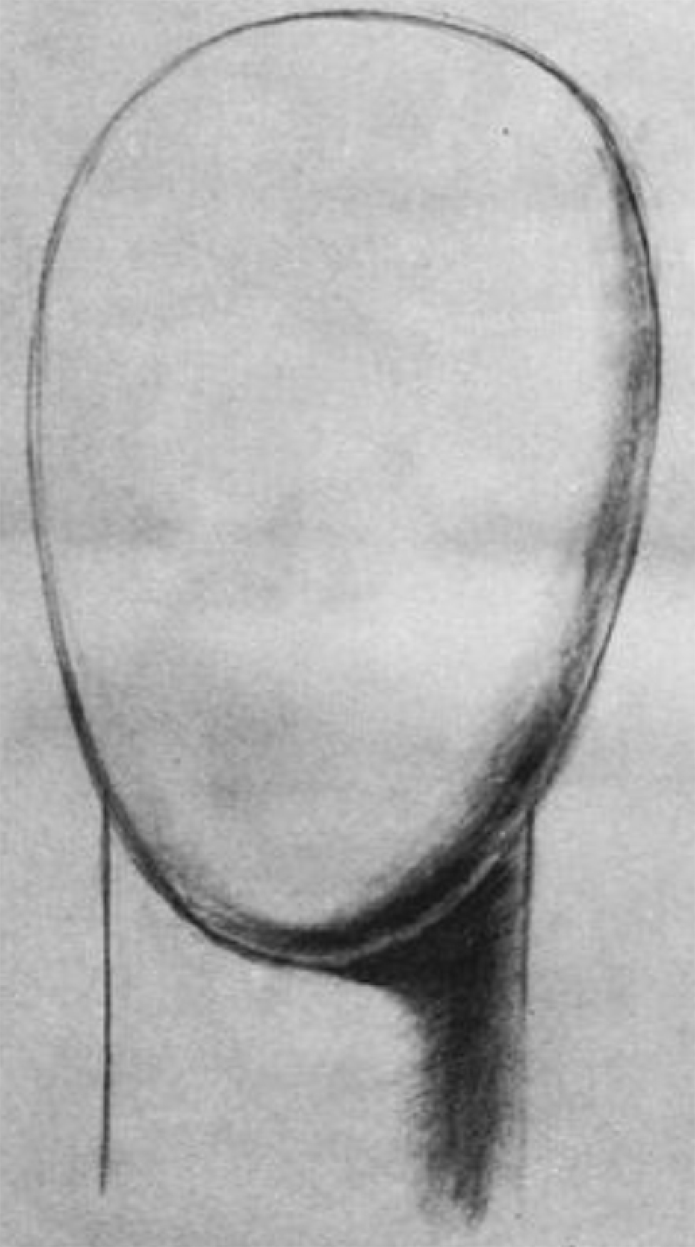 Draw the head out as an oval.