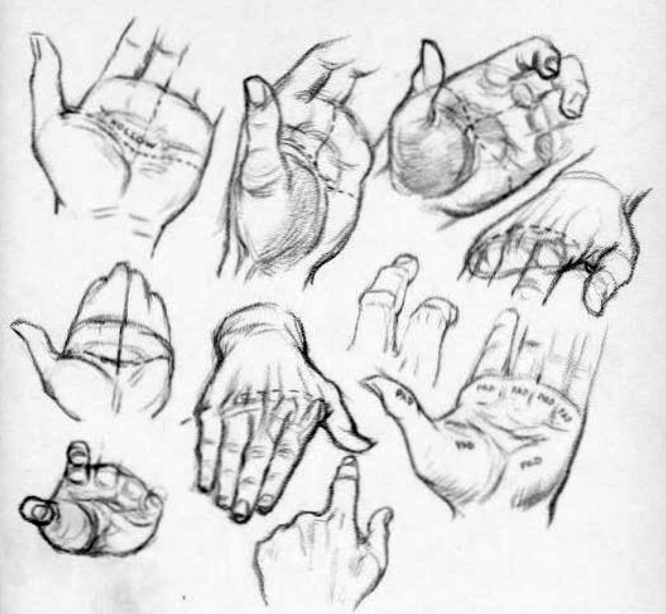 How to draw the palms of the hands or the hollows of the palms