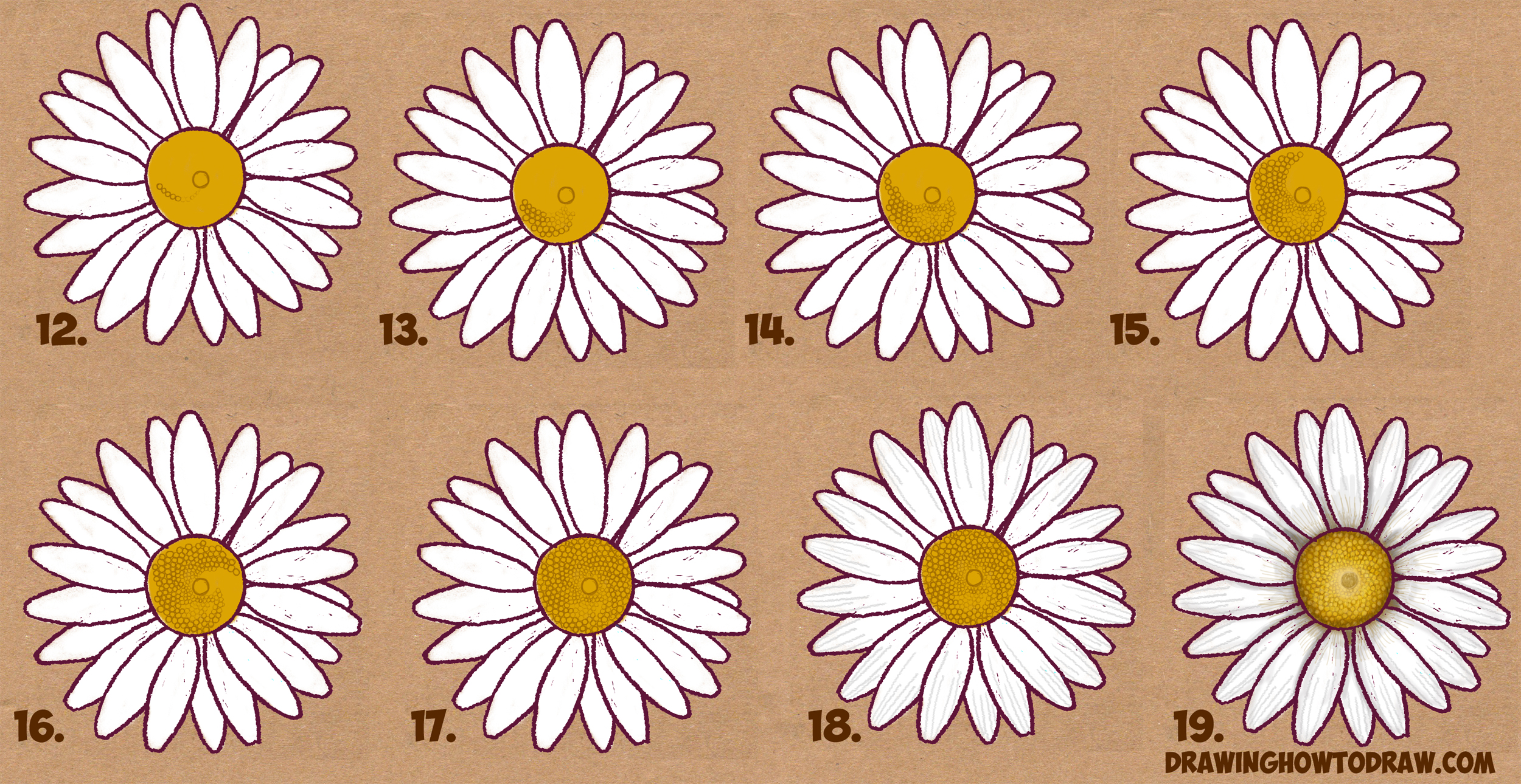 How to draw a daisy flower daisies in easy step by step drawing learn how to draw a daisy flower daisies in simple steps drawing lesson dhlflorist Choice Image