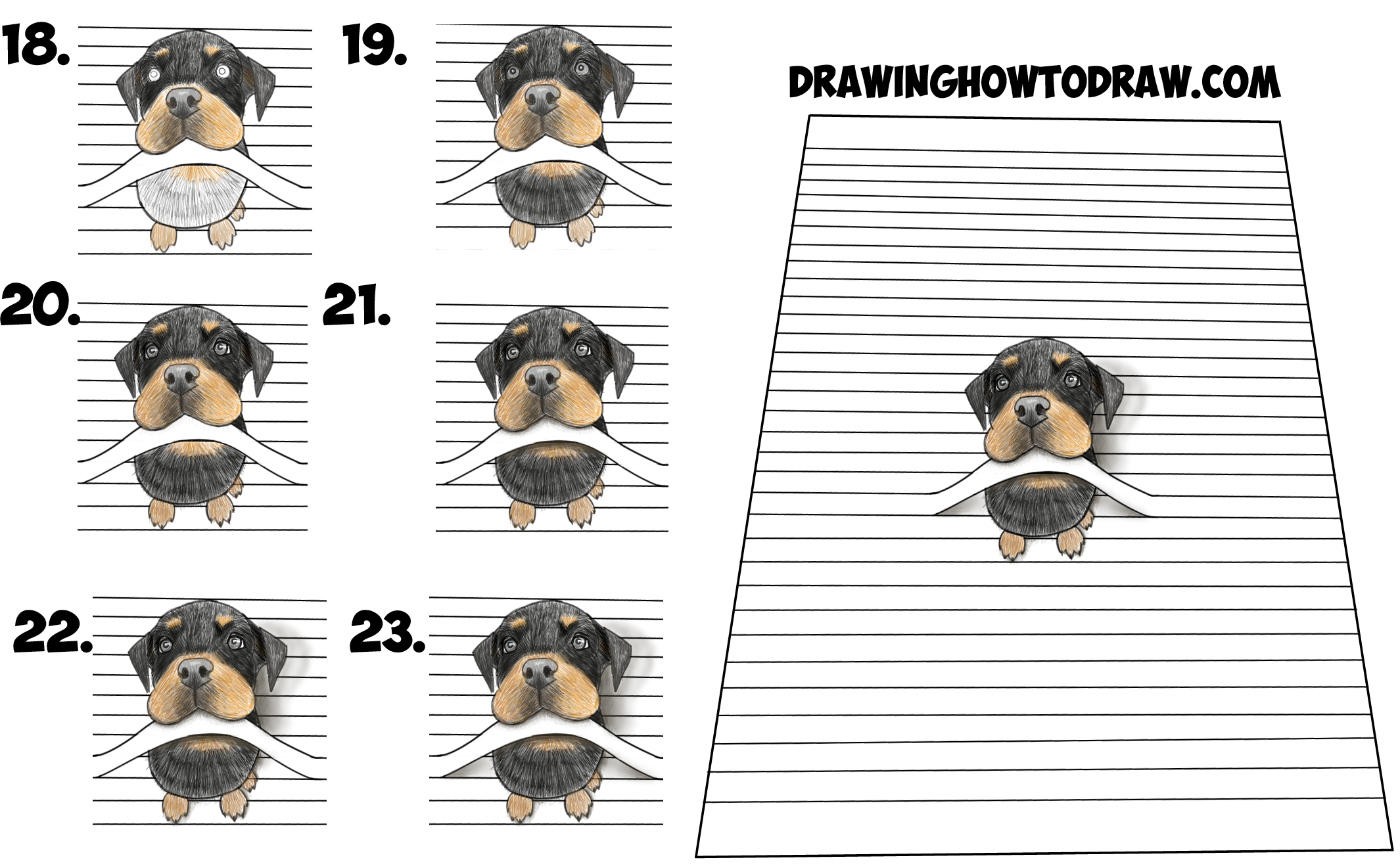 Learn How to Draw a Cool 3D Rottweiler Puppy Dog Biting a Line from Lined Notebook Paper Simple Steps Drawing Lesson for Children & Beginners