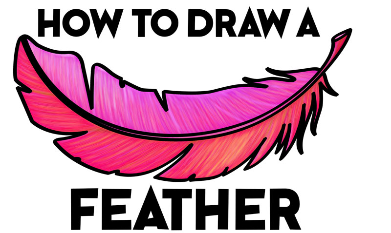 How To Draw A Feather Easy Step By Step Drawing Tutorial For Beginners How To Draw Step By