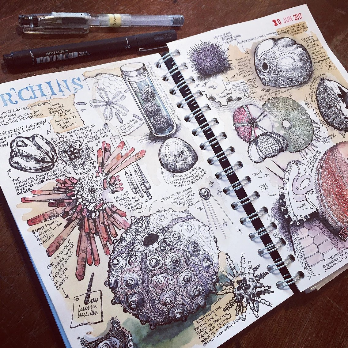 inspirational art sketchbooks Duncan Cameron
