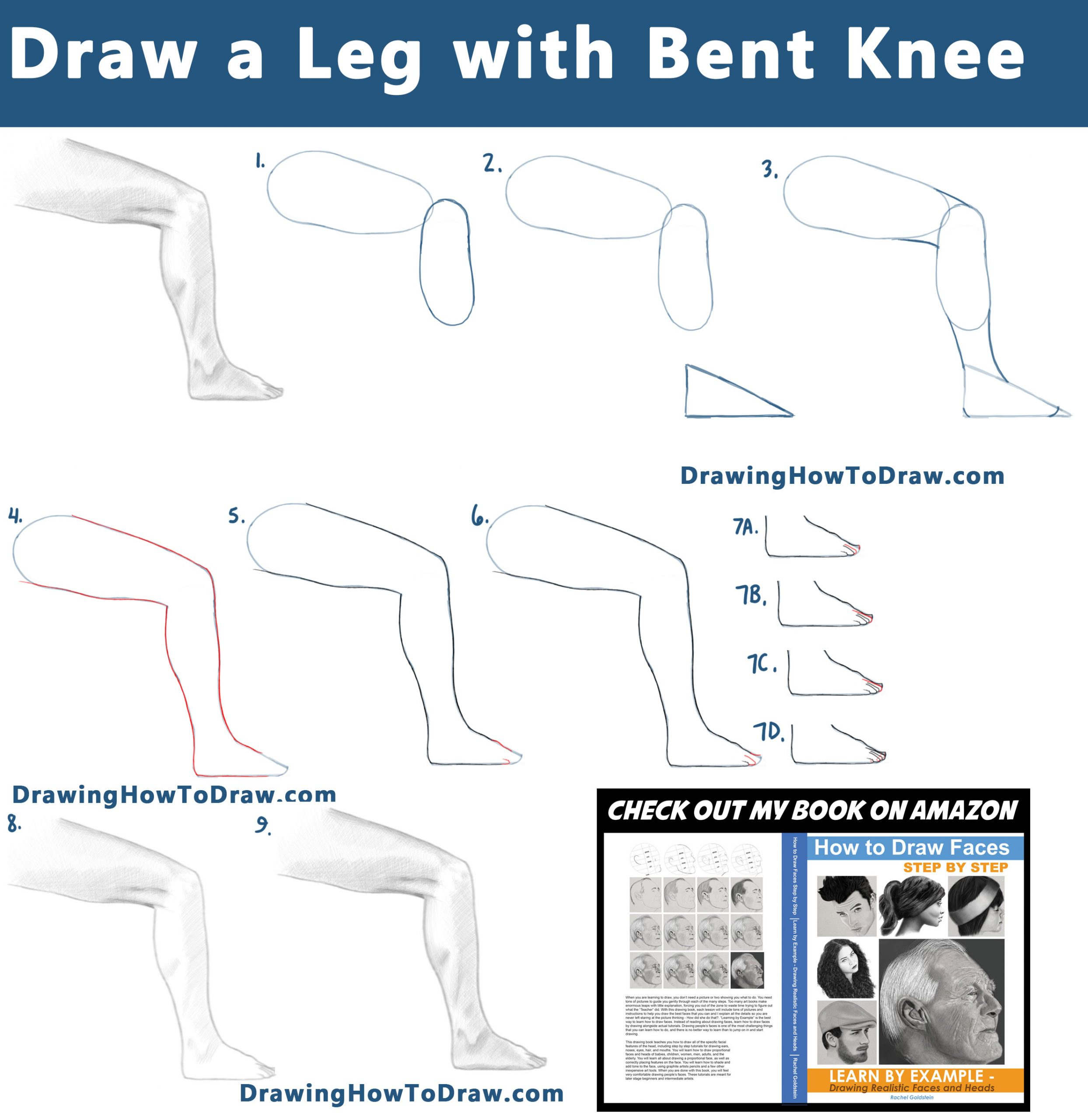 How to Draw a Leg and Foot with a Bent Knee from the Side View :  Step by Step Tutorial 05