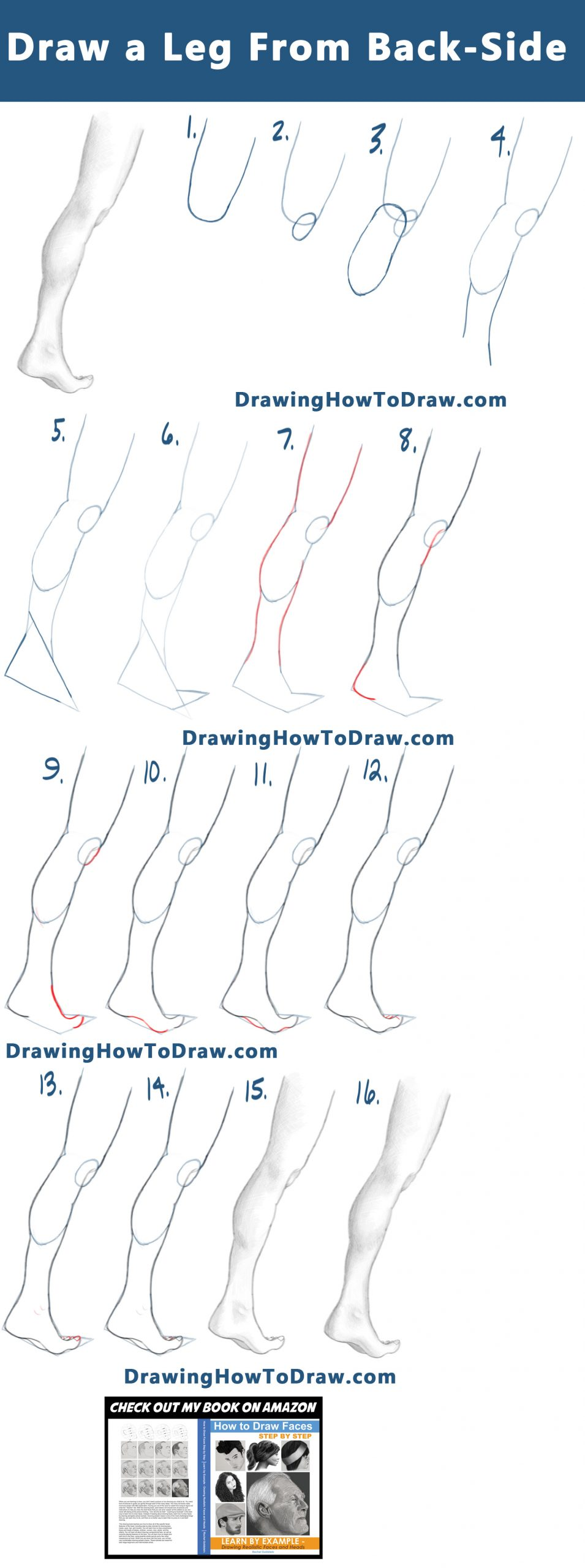 How to Draw a Leg and Foot with Flexed Calf from the Back-Side:  Step by Step Tutorial 07