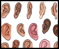 Tutorial on How to Draw Cartoon-ish Ears