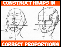 Constructing the Human Head in Right Proportions