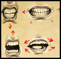 Mouth and Teeth Expressions